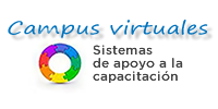 DGGI-Campus Virtuales